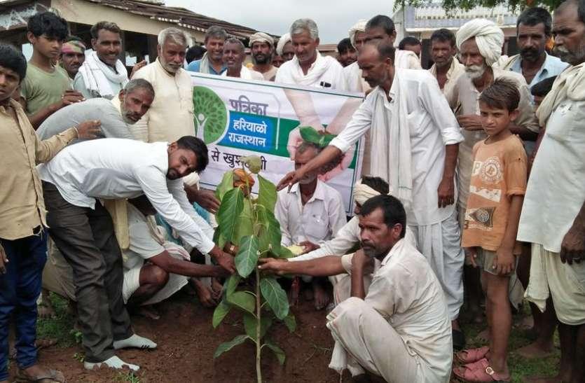 VIDEO: पूजन कर रोपे पौधे, परवरिश का लिया जिम्मा