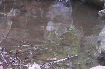 Dambha River: देसी इंजीनियरिंग का कमाल, नदी को किया जिंदा
