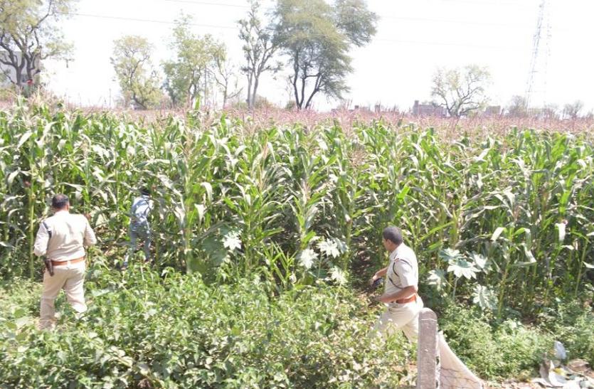Punjab Drug Issue