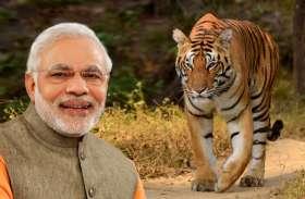बाघों के लिए भारत दुनिया का सबसे सुरक्षित आशियाना : पीएम मोदी