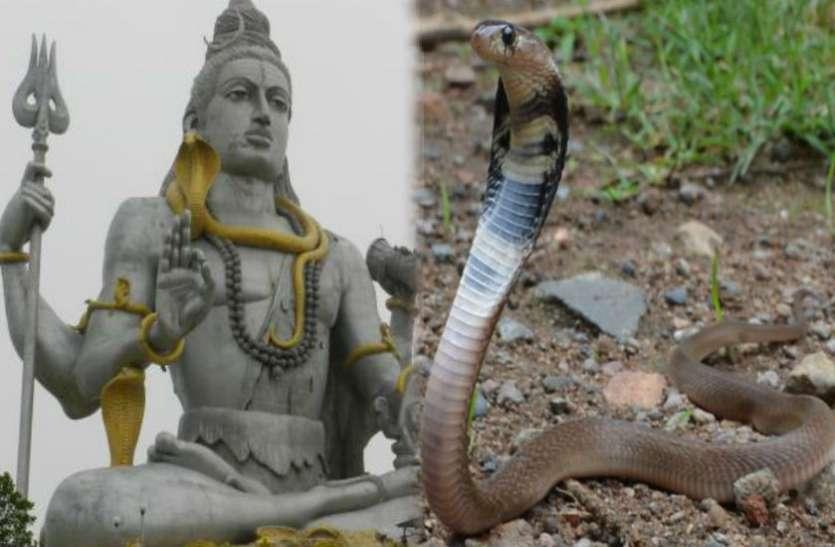 Sawan 2019 : भगवान शिव के पावन महीने में नागिन लेगी बदला !