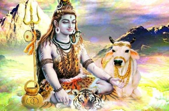 शिव भक्त कांवरियों के लिए किया बड़ा आयोजन, प्रशासन भी खुलकर आया साथ,देखें वीडियो