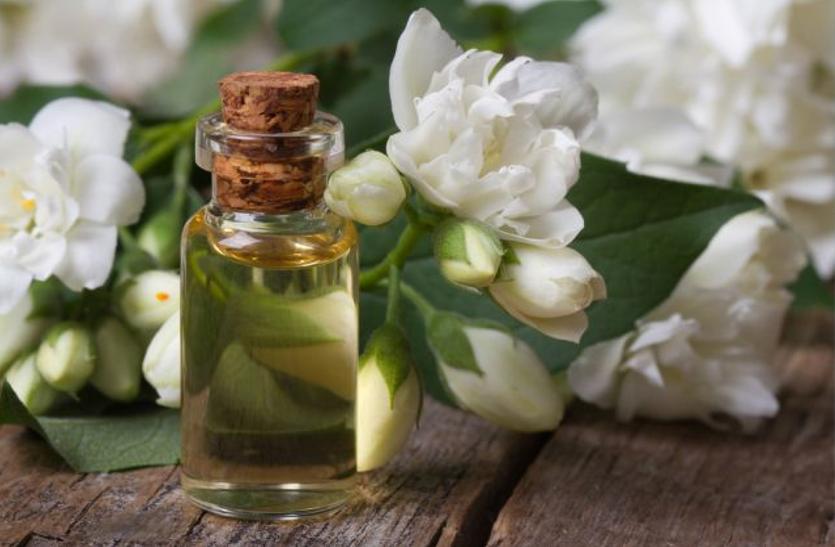 कई रोगों में फायदेमंद है चमेली के फूल, पत्ते व तेल