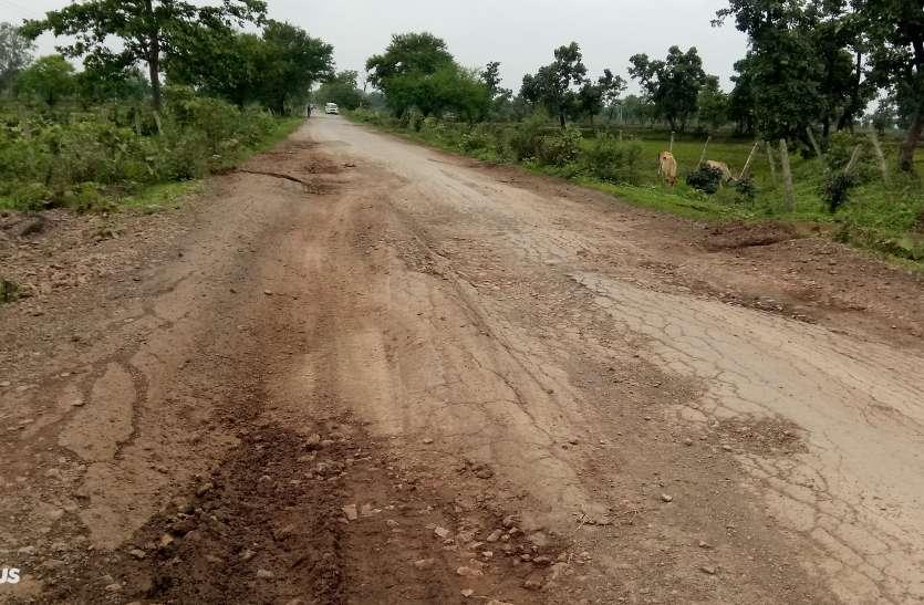 पथरिया-मुंगेली मुख्य मार्ग जर्जर, आवागमन में हो रही है परेशानी