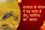 बरसात के मौसम में बढ़ जाता है डेंगू, मलेरिया के साथ इन बीमारियाें का खतरा