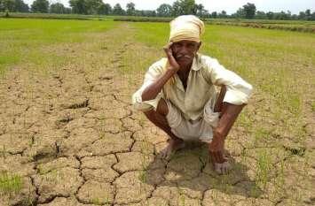 रोपाई, बियासी के समय सूखे पड़े हैं खेत, चिंता में किसान