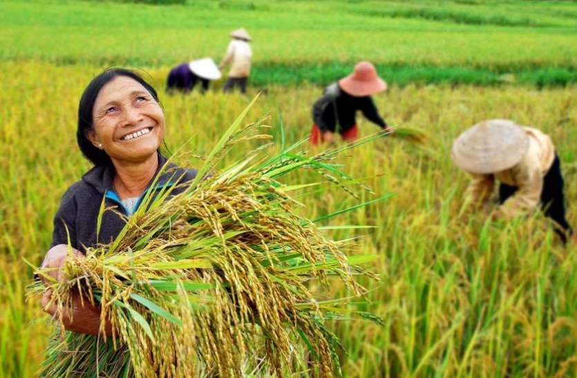 Pm Kisan Samman Nidhi Scheme 3rd Installment Will Be Transfer Today - पीएम  किसान सम्मान स्कीम की आखिरी किस्त होगी जारी, आज किसानों के खाते में आएंगे  रुपए | Patrika News