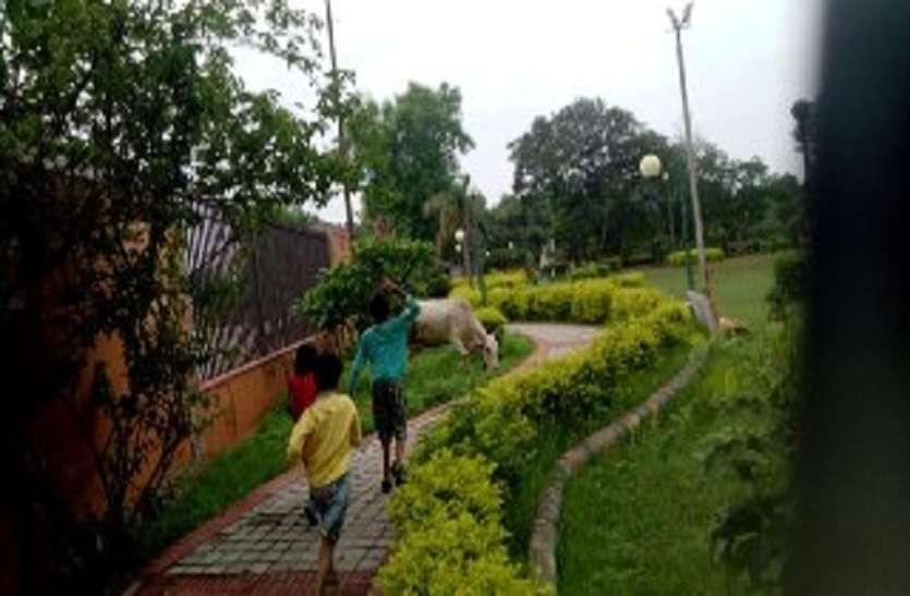 पीएम मोदी के स्वच्छ भारत मिशन में नन्हे बच्चों का कमाल, जिम्मेदार भी रह गए अचंभित