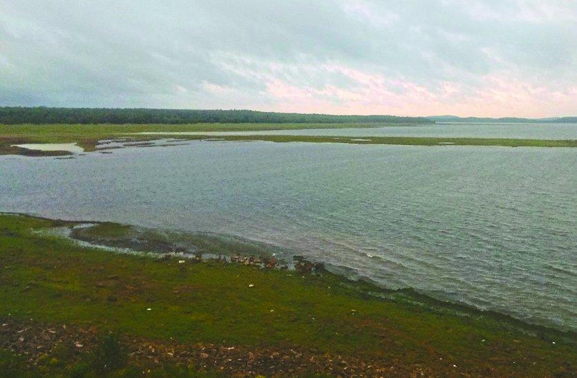 पड़ौसी जिले में नदी-नाले लबालब, बालोद में मानसून रूठा