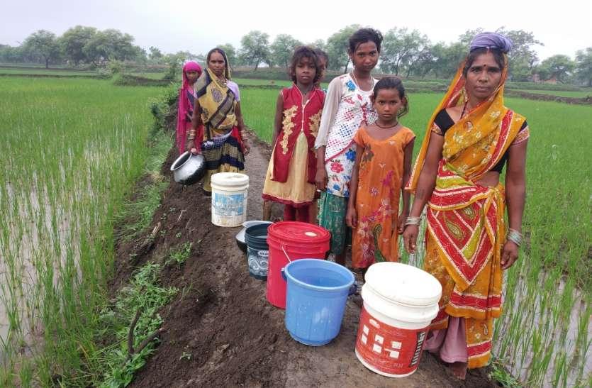 एक किमी दूर मेड़ पार कर खेत की पंप से लाते हैं पीने के लिए पानी