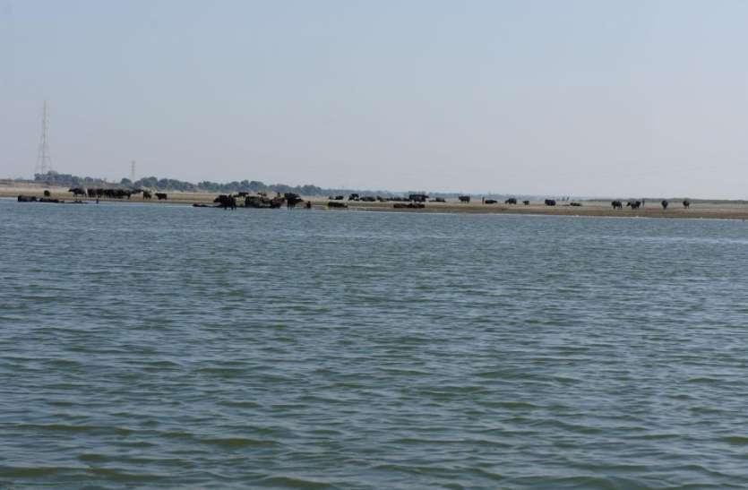 पिकनिक मनाने निकला था परिवार, बनास के गड्ढे में डूबने से बालिका की हुई दर्दनाक मौत