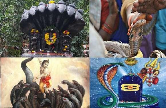 #NagPanchami2019 : इस बार नाग पंचमी पर नाग देवता की ऐसे करें पूजा, होगी हर मनोकामना पूरी