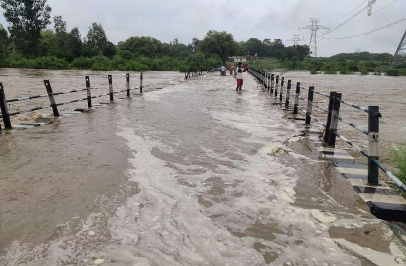 अलान नदी ने भरी उफान दर्जनों गांव पर मंडराया बाढ का खतरा, सैकड़ों एकड़ में लगी धान की फसल तबाह