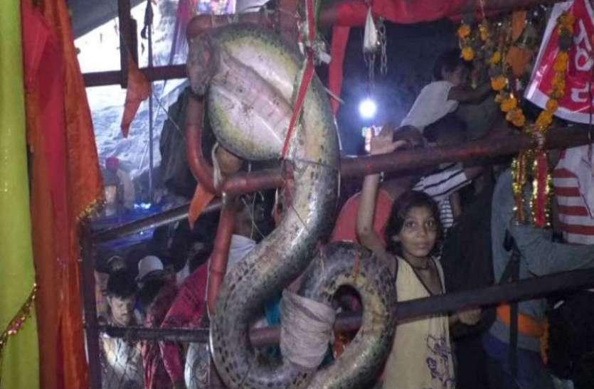 यहां है पृथ्वी का नागलोक, अमरनाथ से भी कठीन है नागद्वारी यात्रा