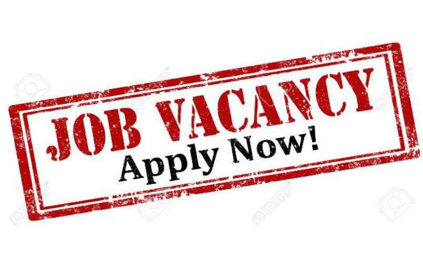 बेरोजगारों के लिए खुशखबरी, 4336 पदों पर निकली बंफर भर्ती, ऐसे करें आवेदन