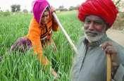 राजस्थान के अन्नदाताओं के लिए बड़ी खबर, सहकारी बैंक किसानों की आय में बढ़ोतरी के लिये देंगे ऋण