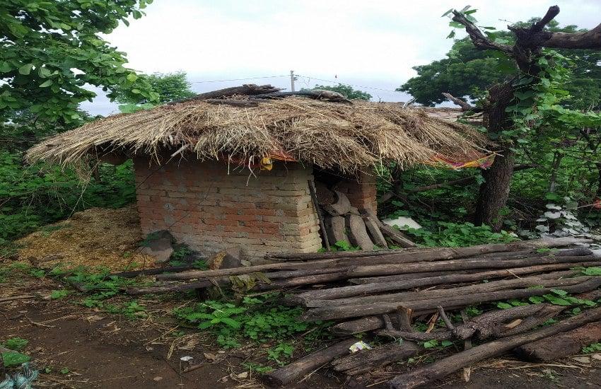 लापरवाही: घटिया निर्माण की भेंट चढ़े 14 गांव के शौचालय