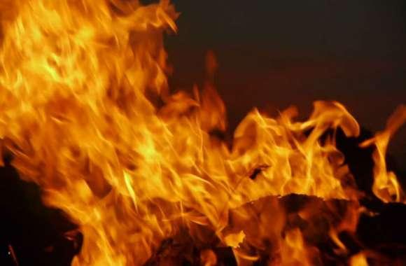 दहेज प्रताड़ना से परेशान होकर मायके रह रही विवाहिता को पति ने बेहोशी का इंजेक्शन लगाया, फिर पेट्रोल छिड़ककर जिंदा जला दिया...