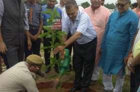 Ayodhya News : अयोध्या में हुआ वृक्षारोपण महाकुंभ का आयोजन लगाये जायेंगे 35 लाख 11 हज़ार 646 पौधे