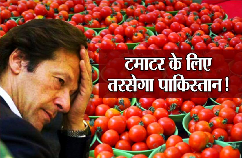 भारत से पंगा लेकर फंसा पाकिस्तान, 300 रुपये किलो बिक रहे टमाटर, MP के इन जिलों से होती है सप्लाई