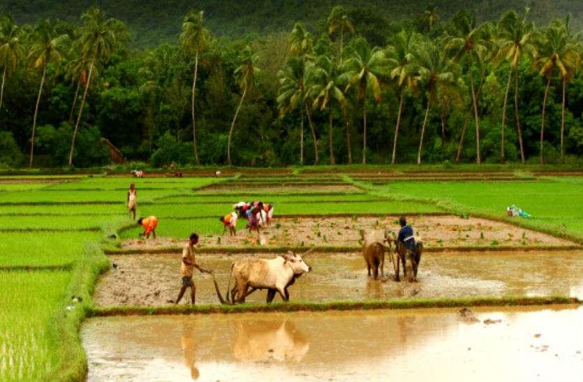 Farmer pensions scheme