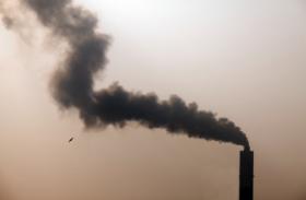 वायु प्रदूषण से माैताें में राजस्थान शीर्ष पर, उत्तर प्रदेश का दूसरा नंबर : विशेषज्ञ