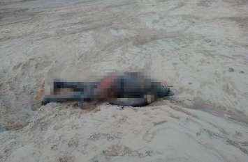 उफनती नदी का पानी हुआ कम तो रेत में दबी दिखाई दी कोई चीज, पास गए तो भागना पड़ा उल्टे पांव