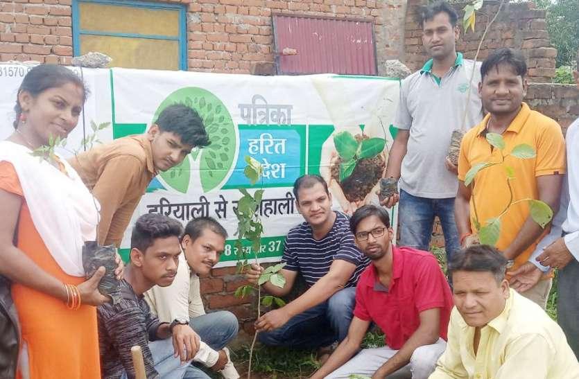 प्रकृति का उतरो कर्ज, पौधरोपण कर पूरा करो फर्ज, पत्रिका हरित प्रदेश अभियान में मिली यह प्रेरणा