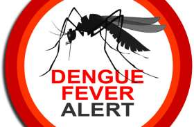 डेंगू मरीज मिलने से अलर्ट, घरों में लार्वा की जांच