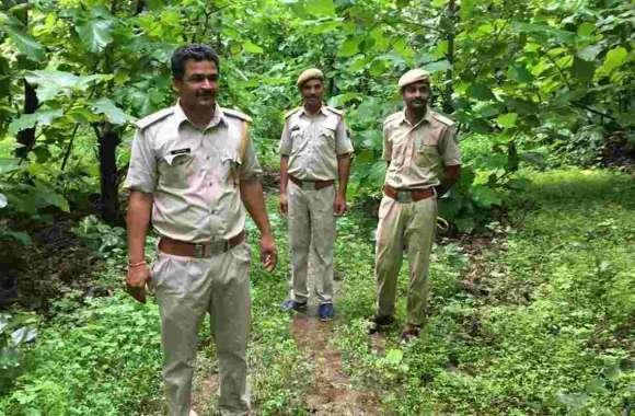 वन विभाग ने 33 लोगों के खिलाफ मामला दर्ज कराया