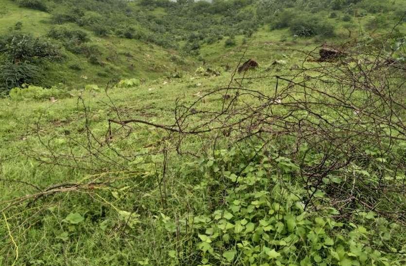 भारत-पाक की तरह है राजस्थान और गुजरात के दो गांवों में विवाद, 64 साल से जारी है जंग