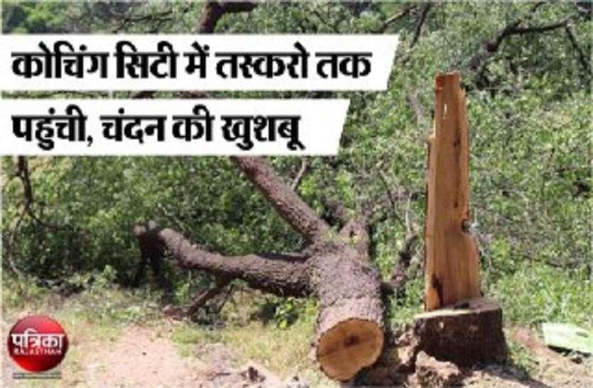 मंत्री जी के आवास के सामने से आधी रात चंदन का पेड़ काट ले गए तस्कर...सुरक्षा व्यवस्था की खुली कलई
