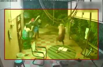 VIDEO: घर में घुसे चोरों पर दंपत्ति ने बरपाया कहर