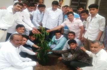 पौधरोपण कर दिया पर्यावरण संरक्षण का संदेश