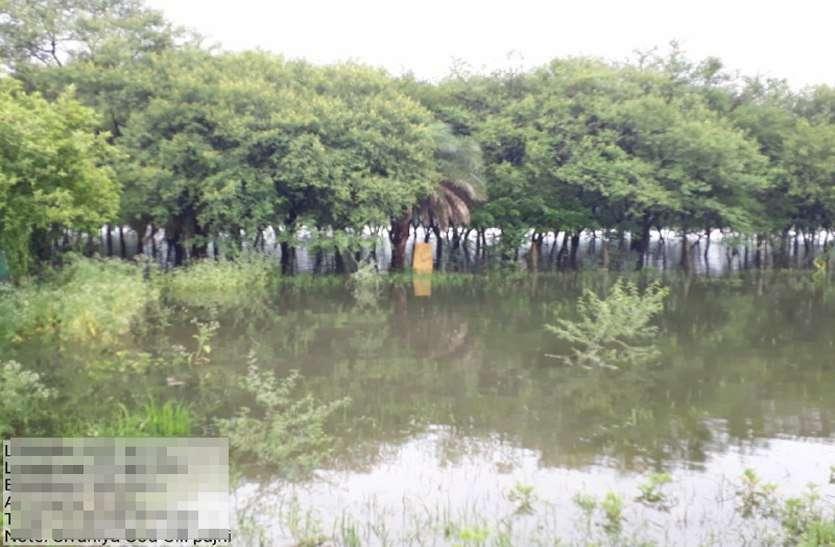 lake view bhopal : बड़े तालाब का किया सर्वे, जीपीएस की मदद से गूगल मैपिंग कर जांचे 300 प्वाइंट