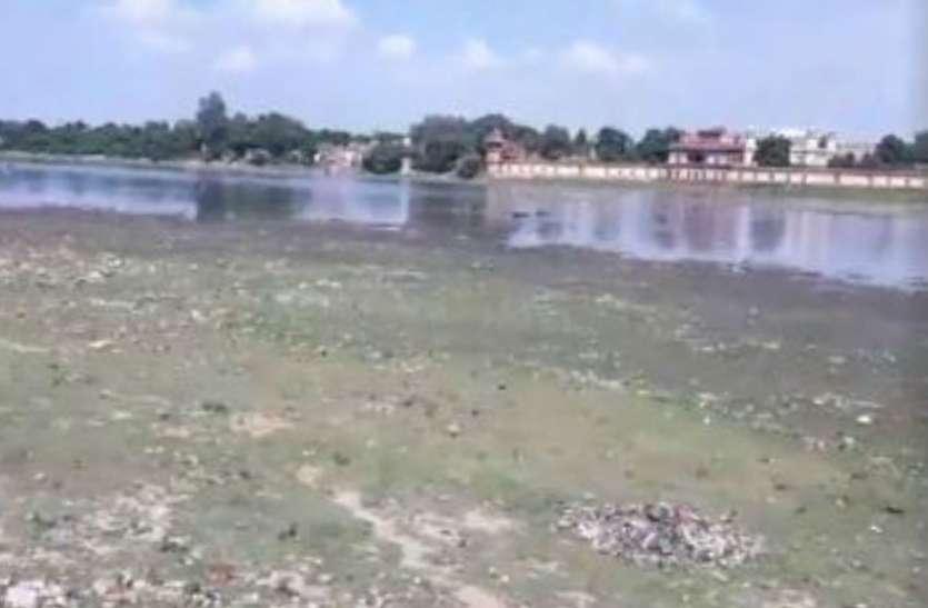 Janmashtami पर कान्हा के जन्म को लेकर उल्लास लेकिन Yamuna उदास, कारण हैरान करने वाला, देखें वीडियो
