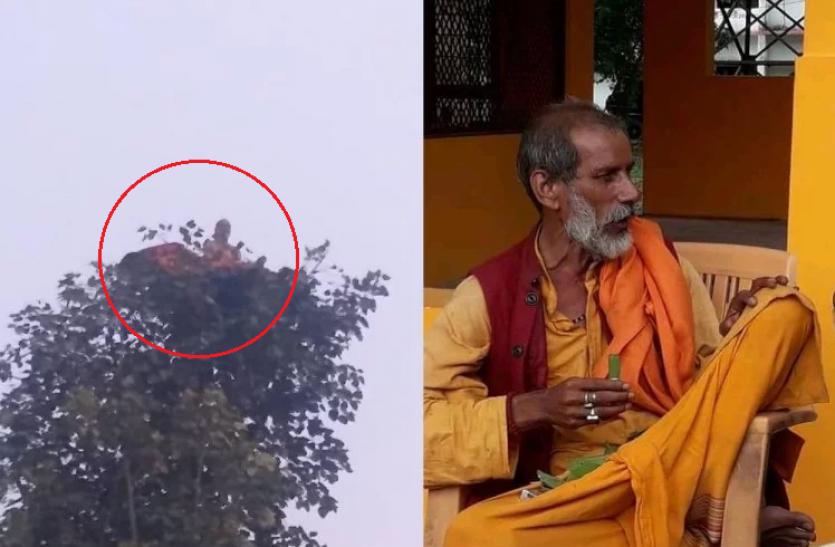 पेड़ पर बैठकर खाते और सोते हैं 'बंदरिया बाबा', करते हैं भगवान हनुमान से जुड़े कुछ दावे