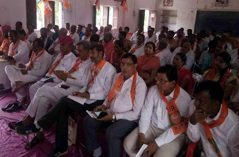 भाजपा जिला स्तरीय बैठक में सदस्यता अभियान पर की चर्चा, लक्ष्य से अधिक सदस्य जौडऩे पर बल दिया