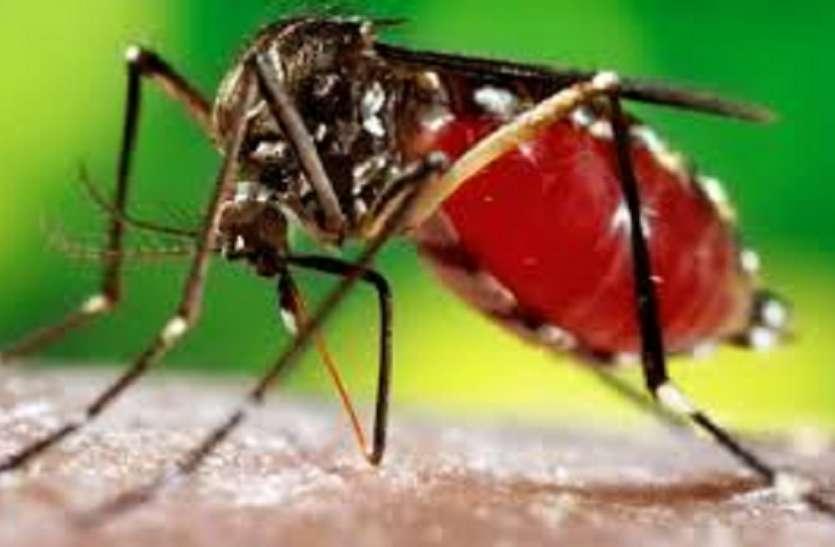 महिला की मौत, परिजन बोले डेंगू, अस्पताल बोला सेपसिस