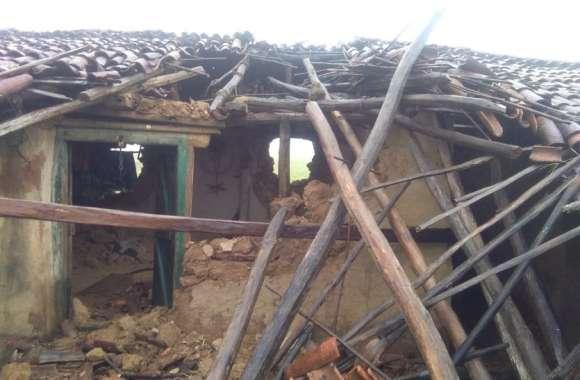 छत्तीसगढ़ के शिमला में 14 हाथियों का कहर: बरसात में 3 परिवारों को किया बेघर, जान बचाकर भागे, रौंद दी 5 एकड़ आलू की फसल