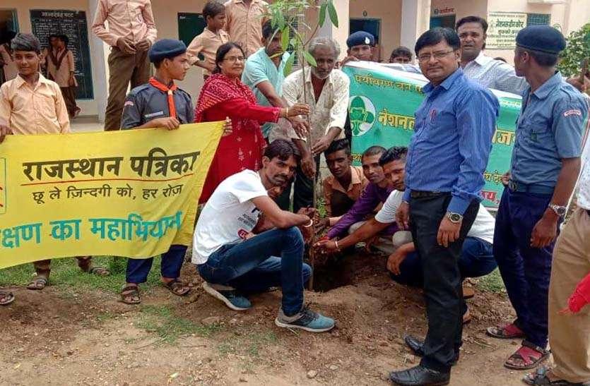 हरयाळो राजस्थान- पौधारोपण कर पेड़-पौधों को बताया जीवन का मूल आधार
