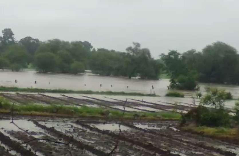 भारी बारिश के बाद उफनी कालीसिंध, खेतों में भरा पानी, त्रिवेणी का गेज बढ़ने पर निरस्त हुए स्वतंत्रता दिवस समारोह