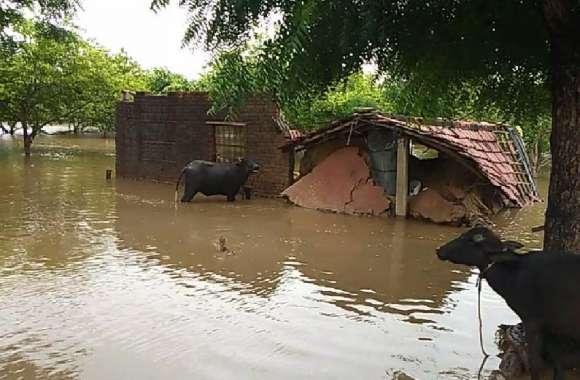 बरसात ने मचाई तबाही, गांव बने टापू