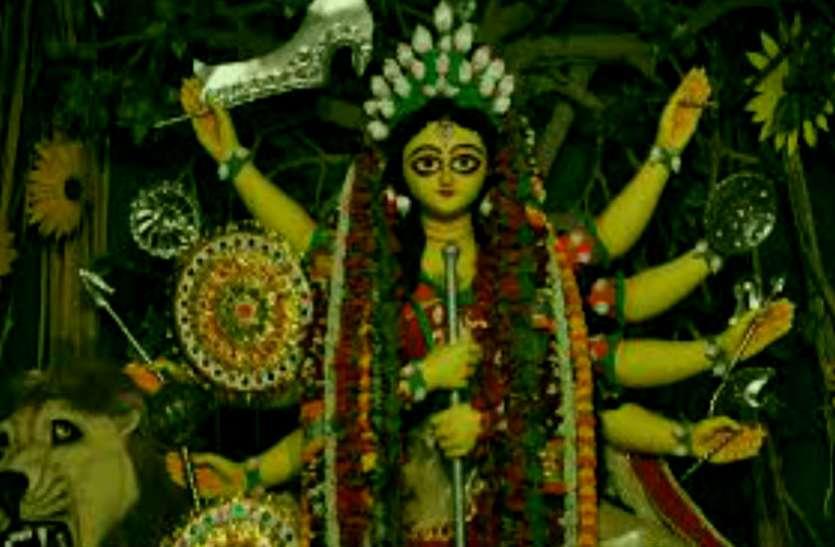 जिसके फूल से नवरात्रि में महारानी का करते हैं श्रृंगार, उसका पत्ता डेंगू, टायफाइड, मलेरिया जड़ से कर देता है खत्म