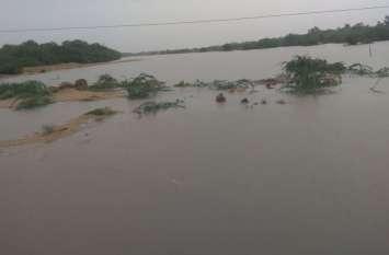 33 घंटे में आहोर-जालोर में 6 इंच बारिश, सुकड़ी नदी में आया पानी, जवाई का गेज हुआ इतना