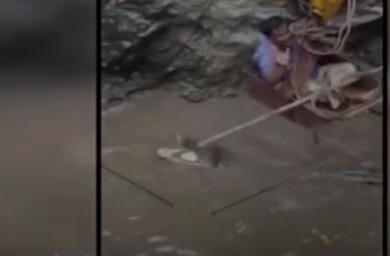 Video: भारी बारिश के कारण कुएं में जा फंसा मगरमच्छ, देखिए फिर क्या हुआ