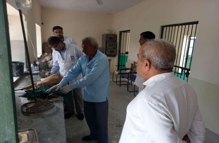 वन मंत्री विश्नोई ने जांची वन्यजीव उपचार केंद्र की व्यवस्थाएं, दिए निर्देश