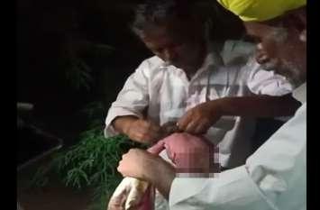 देचू के फतेहगढ़ गांव में झाडिय़ों में मिली नवजात बच्ची, रोने की आवाज सुन ग्रामीणों ने संभाला