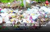 पीएम नरेंद्र मोदी के आह्वान की भी नहीं परवाह, राजस्थान में पॉलीथिन का धड़ल्ले से उपयोग, फिर कैसे बनेगा 'पॉलीथिन मुक्त भारत'