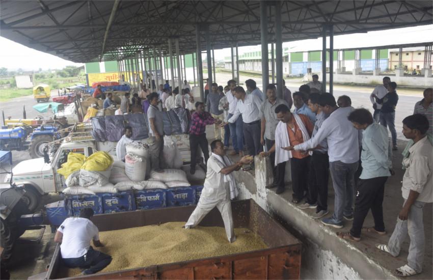 किसान की व्यथा : पिताजी अस्पताल में भर्ती हैं, मंडी का सहारा था, लेकिन यहां भी नहीं दे रहे नकद रुपए